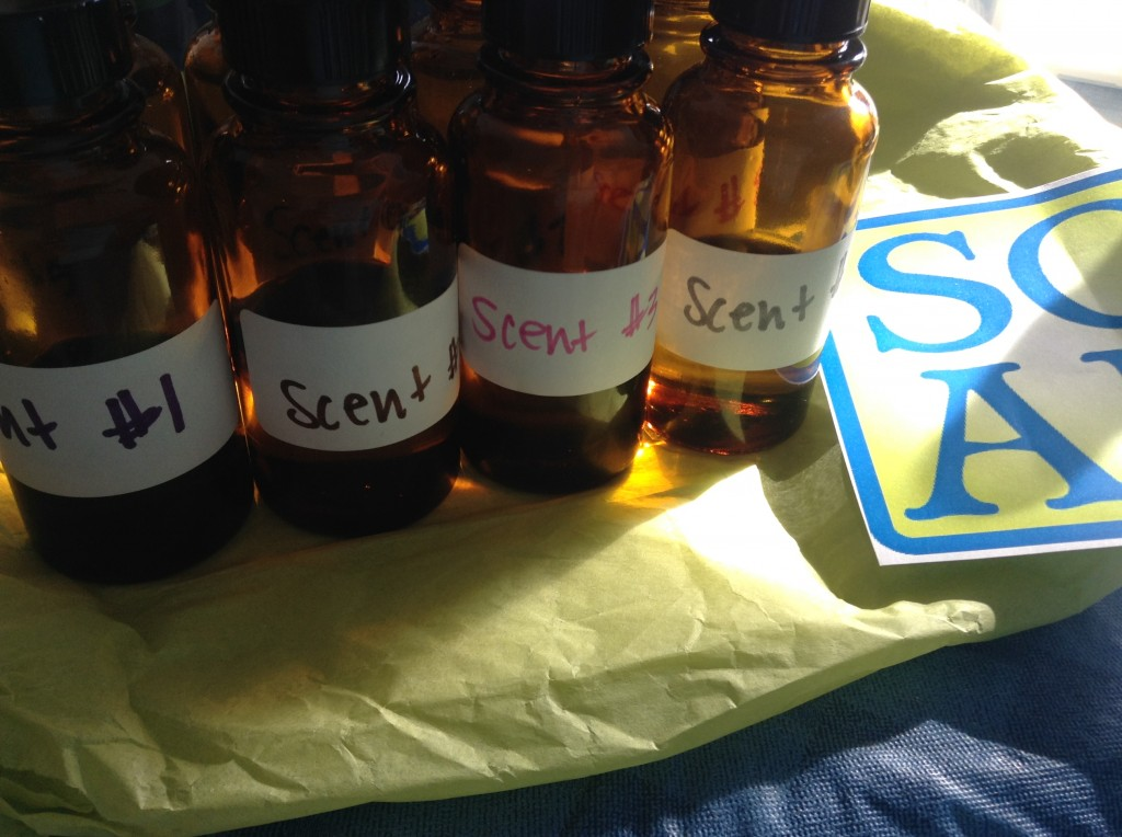S.O.A.P. Panel Test Fragrances